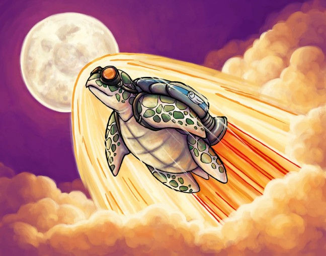 Song of the Space Turtle 2015