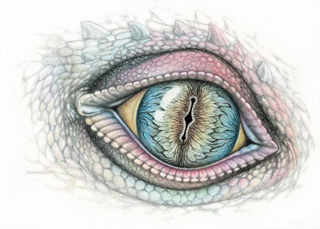 3_eye