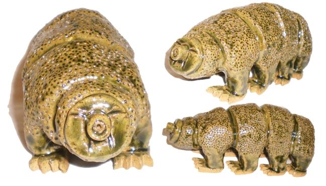 tardigrade7.21