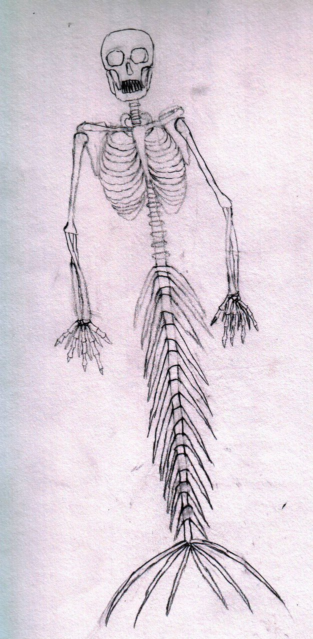 mermaid_skeleton_by_gloomymercury-dahkhd5