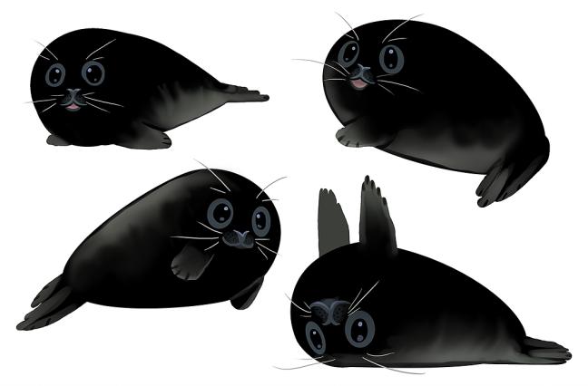 Melanistic Seals