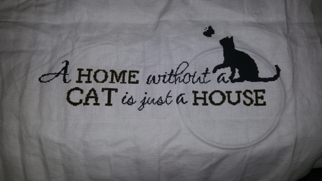 A Home Without A Cat